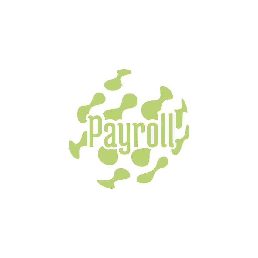 SAN Payroll